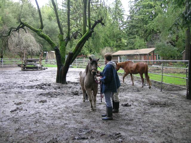 mud and rain