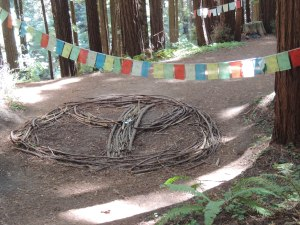 Peace sign made of redwood branches