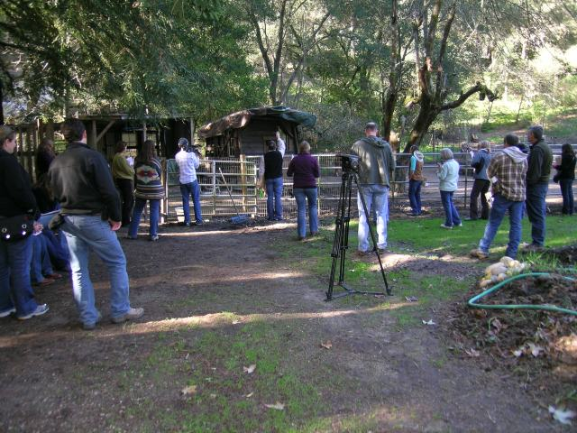 Watching trainer Suzanne explain our soil and water table issues inside the animal corral.