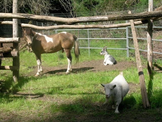 On Farm 3:08