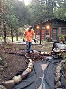 adding mulch