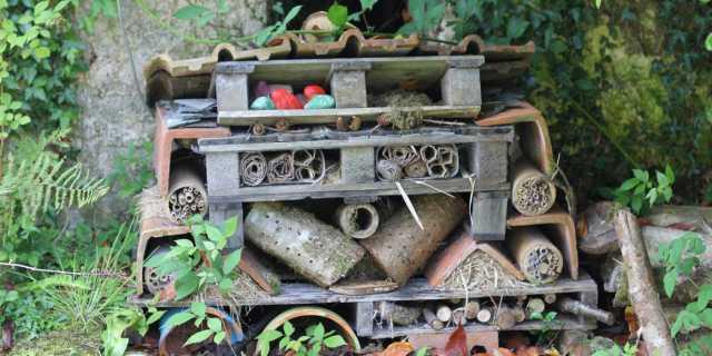 bug-hotel