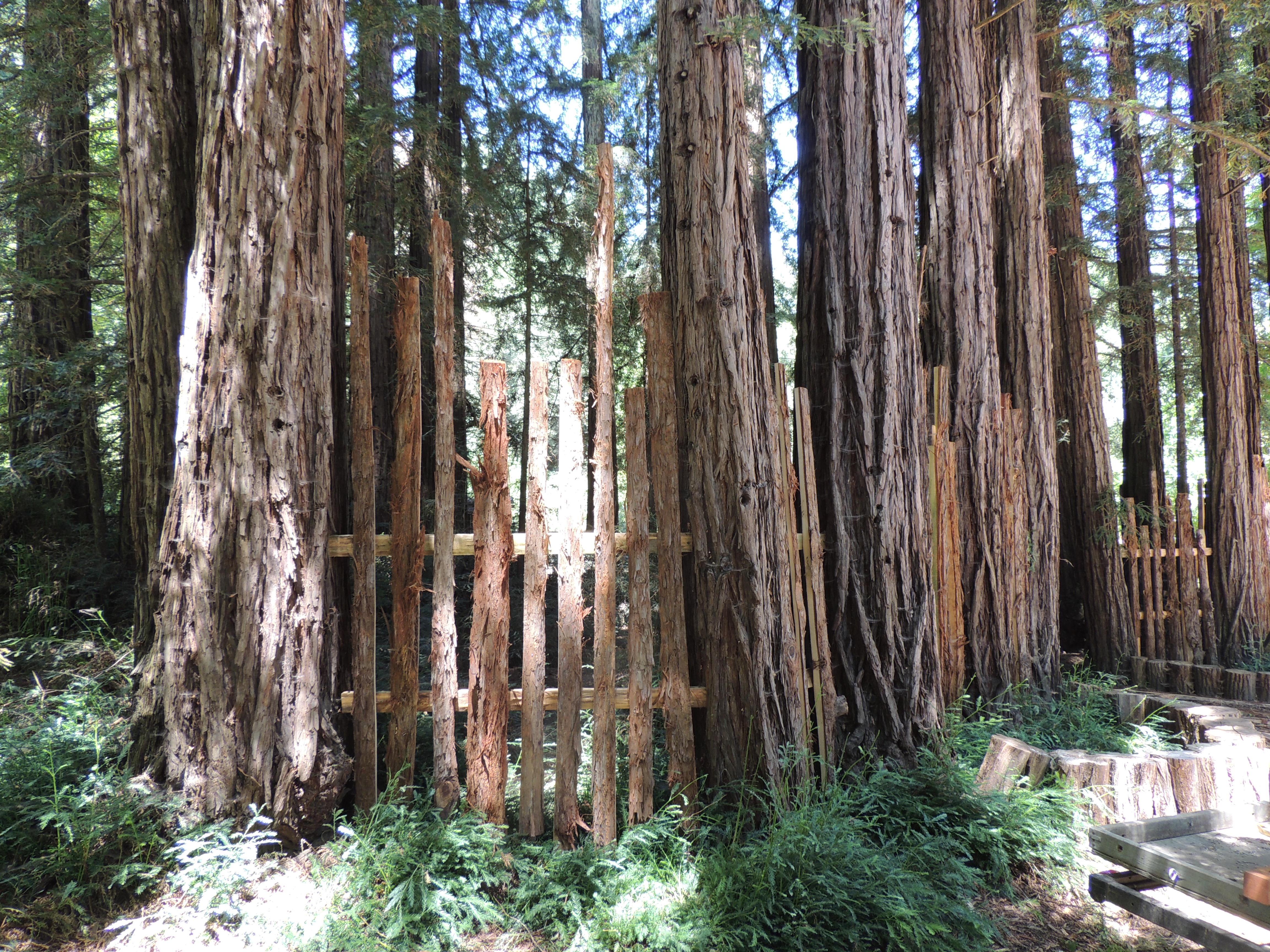 Redwood Grove Bark Fence Lovecreekfarm